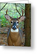 Eight Point Face To Face Greeting Card