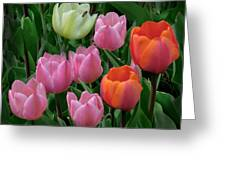 Eight Tulips And One Bee Greeting Card by Muriel Levison Goodwin