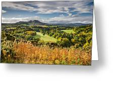 Eildon Hills In Autumn Greeting Card