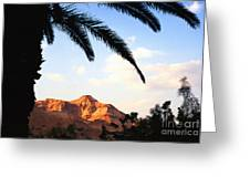 Ein Gedi Oasis Israel Greeting Card
