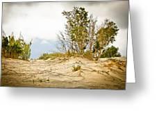 Elafonisi Nature Greeting Card