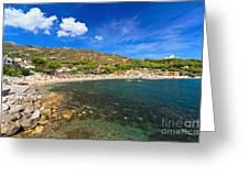 Elba Island - Beach In Seccheto  Greeting Card