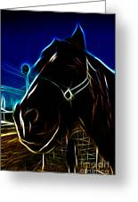 Electric Horse Greeting Card