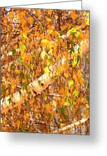 Elegant Autumn Branches Greeting Card
