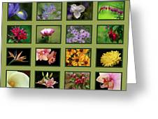 Elegant Flowers Collection Greeting Card
