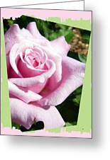 Elegant Royal Kate Rose Greeting Card by Will Borden
