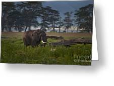 Elephant   #0134 Greeting Card