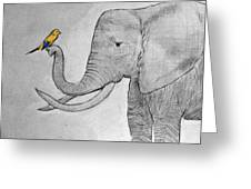 Elephant And Friend Greeting Card