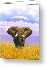 Elephant At Table Mountain Greeting Card