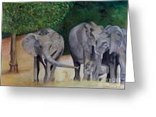 Elephant Family Gathering Greeting Card