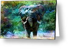 Elephant - Featured In Comfortable Art- Wildlife- And Nature Wildlife Groups Greeting Card