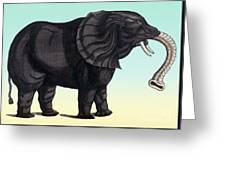 Elephant From The Historiae Animalium 16th Century Greeting Card