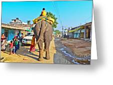 Elephant Ride In Street Greeting Card