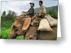 Elephant Rides Greeting Card