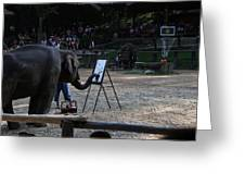 Elephant Show - Maesa Elephant Camp - Chiang Mai Thailand - 011344 Greeting Card by DC Photographer