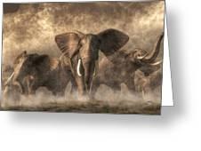 Elephant Stampede Greeting Card