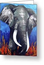 Elephant - The Gentle Greeting Card