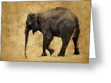 Elephant Walk II Greeting Card