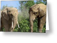 Elephants In The Sand Greeting Card