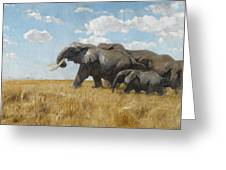 Elephants On The Move Greeting Card