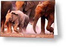 Elephants Stampede Greeting Card