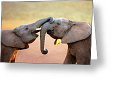 Elephants Touching Each Other Greeting Card