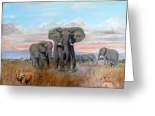 Elephants Warning To The Lions Greeting Card