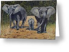 Elephants With Calf Greeting Card