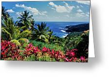 Elevated View Of Trees And Plants Greeting Card