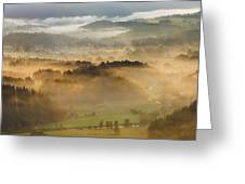 Elevated View Of Trees On Hill Greeting Card