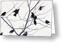 Eleven Birds One Morsel Greeting Card