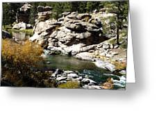 Eleven Mile Canyon - Mountain Stream Greeting Card