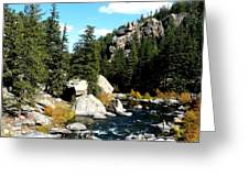 Eleven Mile Canyon Stream Greeting Card