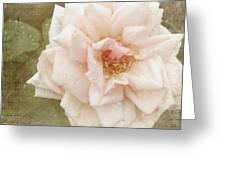 Elie Beauvillain Rose Textured Art Greeting Card