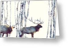 Elk // Follow Greeting Card
