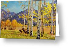 Elk Herd In Aspen Grove Greeting Card