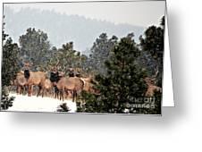 Elk In The Snowing Open Greeting Card