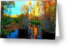 Elk River Inlet In The Fall Greeting Card