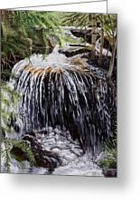 Ellen's Waterfall Greeting Card