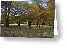 Ellison Park Greeting Card