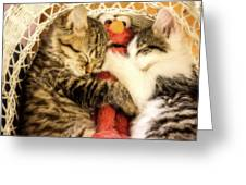 Elmos Nap Time---soft Look Greeting Card