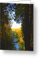 Elora Gorge Greeting Card