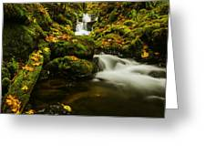Emerald Falls In Columbia River Gorge Oregon Usa Greeting Card