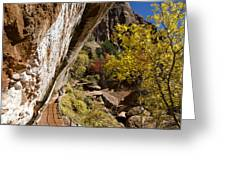 Emerald Falls Zion National Park Greeting Card