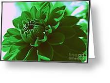 Emerald Green Beauty Greeting Card