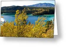 Emerald Lake At Carcross Yukon Territory Canada Greeting Card