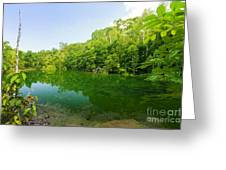 Emerald Pool Greeting Card by Atiketta Sangasaeng