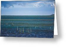 Emerald Seas Greeting Card