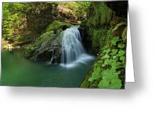 Emerald Waterfall Greeting Card by Davorin Mance