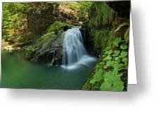 Emerald Waterfall Greeting Card